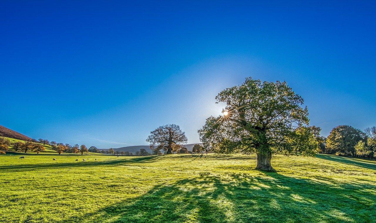 paysage de Yorkshire en Angleterre
